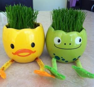 egg heads 4