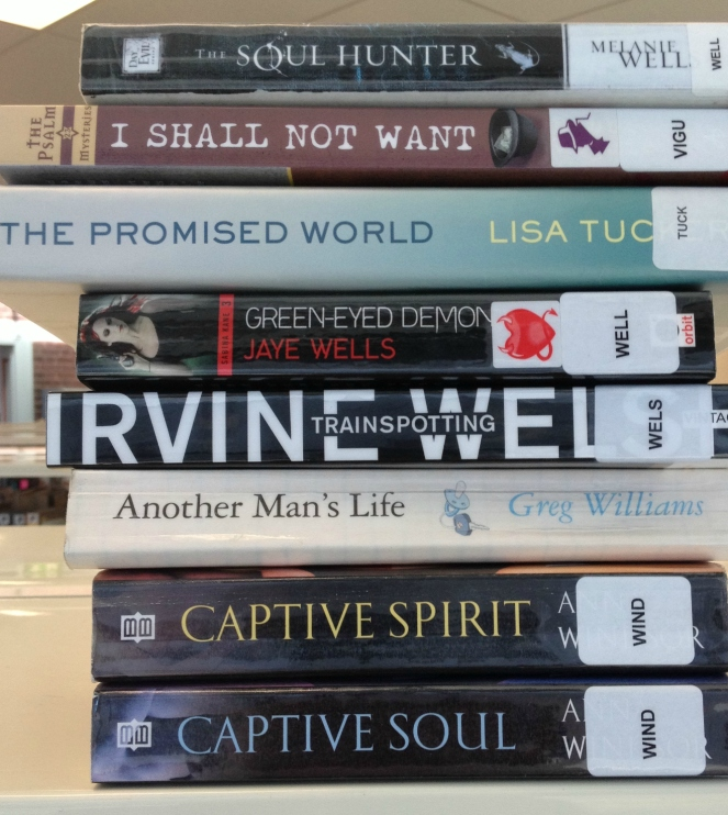 Book Spine poetry 4 photo by Sheryl Allen