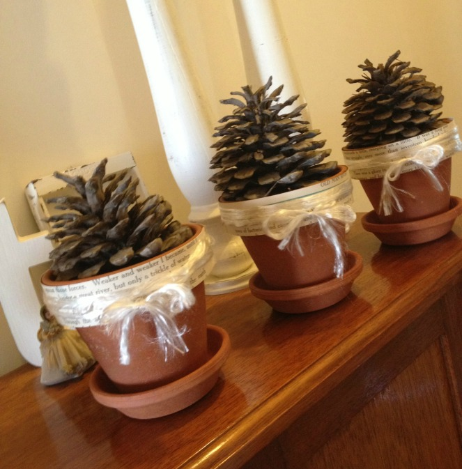 Pine Cone Pots photo by Sheryl Allen