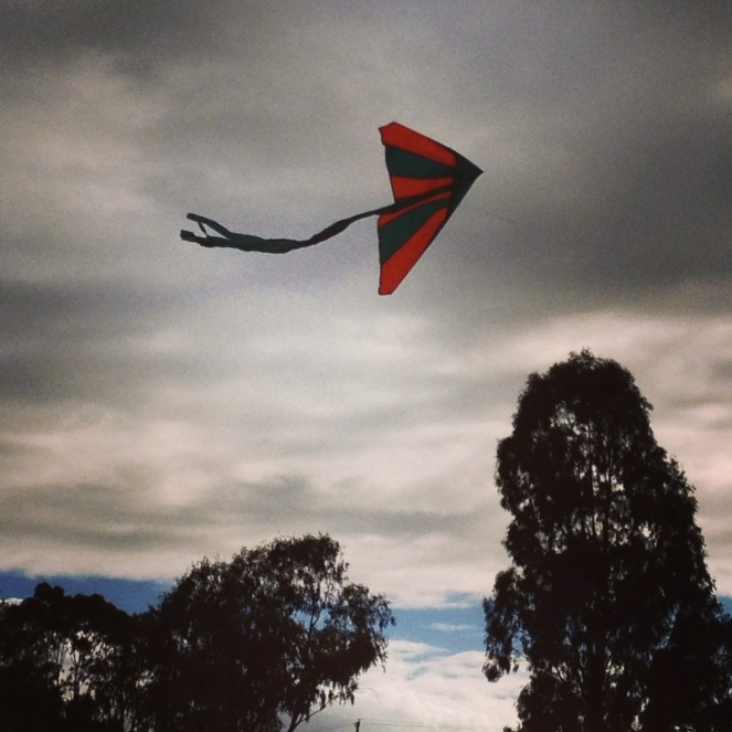 fifty-something, kite flying, midlife, play, boomers