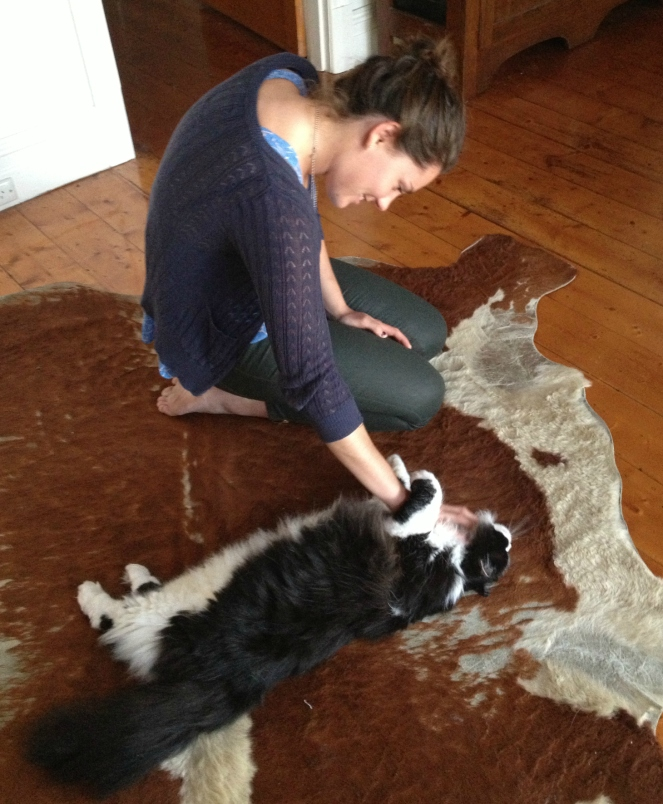 cowhide, ottoman tutorial, DIY otto