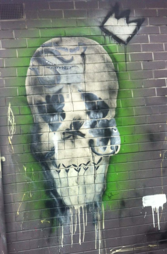 king of the castle, jae allen, skull, skull art, cafe geelong, coffee geelong, pako, pako skull