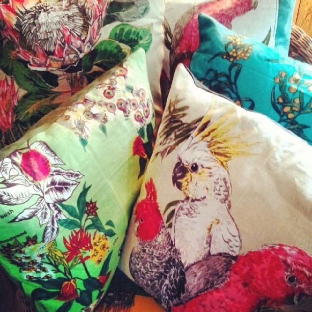 cushions (2)