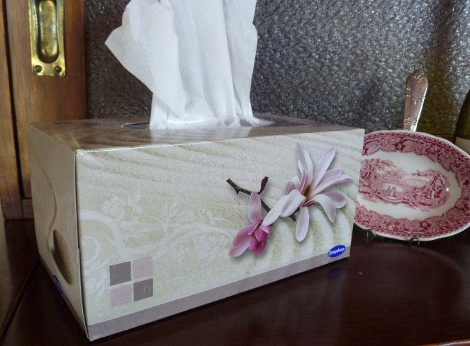 tissue box tags, upcycled, upcycling, craft, DIY, boomers, fifty-something, midlife