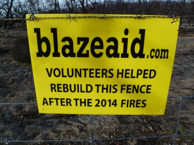 blaze aid, grampians, volunteering, bushfire recovery, midlife, boomers, fifty-something