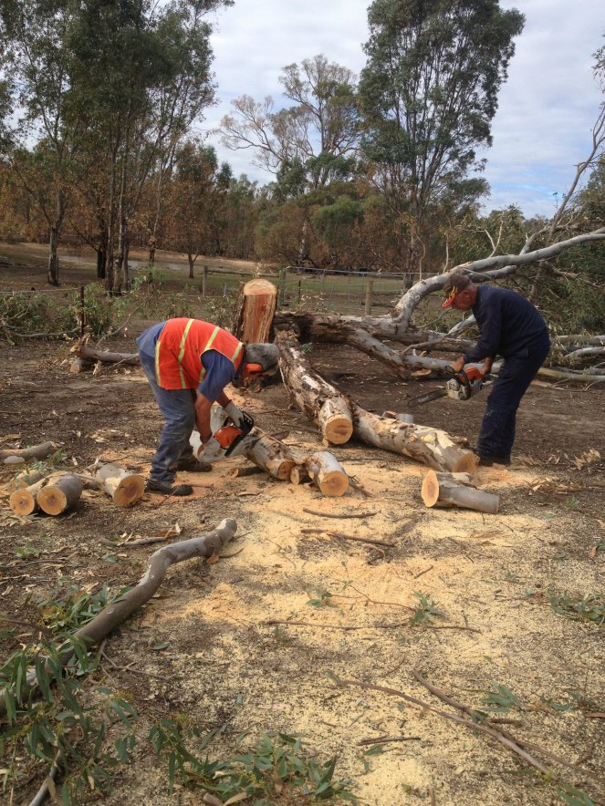 blaze aid, grampians, volunteering, bushfire recovery, midlife, boomers, fifty-something
