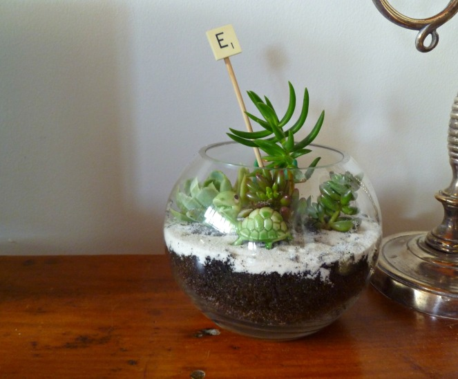DIY terrarium, terrarium tutorial, how to, midlife, boomer, fifty-something