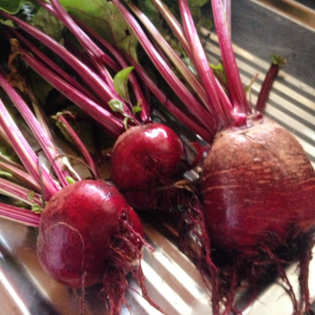roast beetroot and walnut dip recipe, fresh beetroot recipe, grow your own, home grown veggies, boomers, midlife, fifty-something